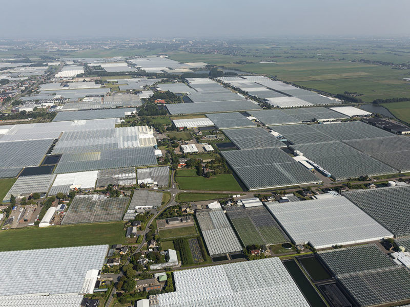 Warmtebedrijf Westland wil glastuinbouw van het aardgas af halen
