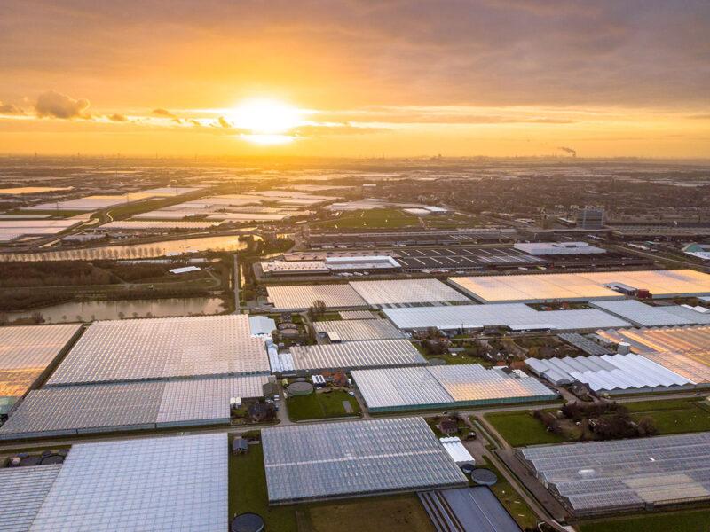 Warmtebedrijf Westland krijgt nieuwe impuls na overname door Yeager Energy